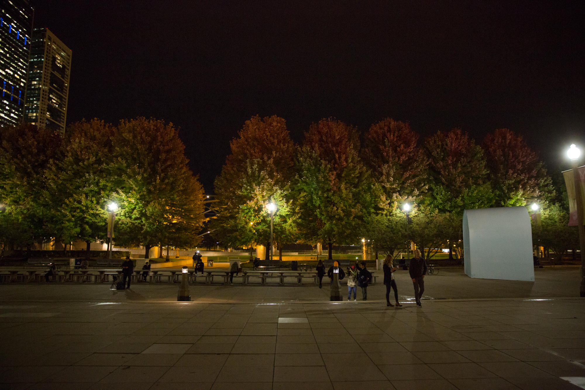 chicago-at-night-blog-116
